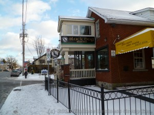 Black Dog Bistro in Manotick